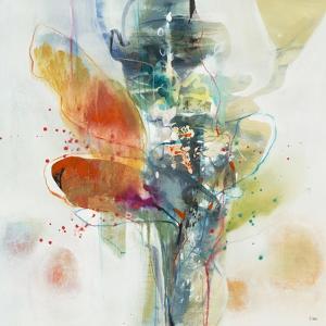 Canna by K. Nari