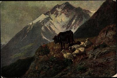K?nstler Christian Mali, Hochgebirge, Kuh, L?mmer, Abhang--Giclee Print