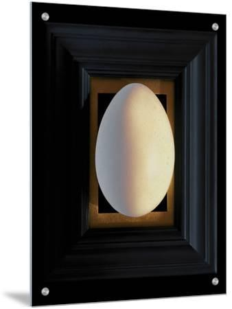 Large White Egg Centered on a Black Frame with Gold Leaf Mat