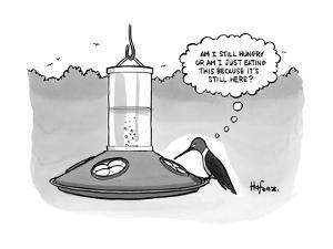 """""""Am I still hungry or am I just eating this because it's still there?"""" - New Yorker Cartoon by Kaamran Hafeez"""