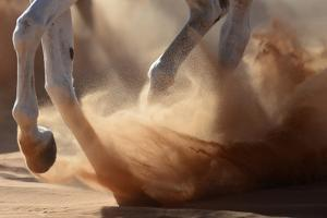 Oman Desert by Kadir Civici