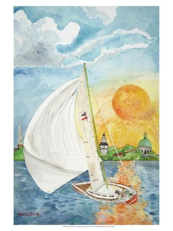 Day Sail