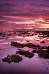 Mud Flats At Low Tide by Kaj Svensson