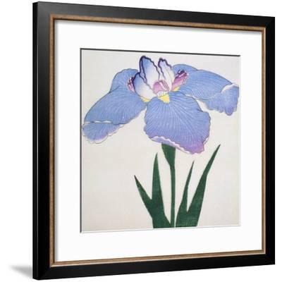 Kaku Jaku Ro Book of a Blue Iris-Stapleton Collection-Framed Giclee Print