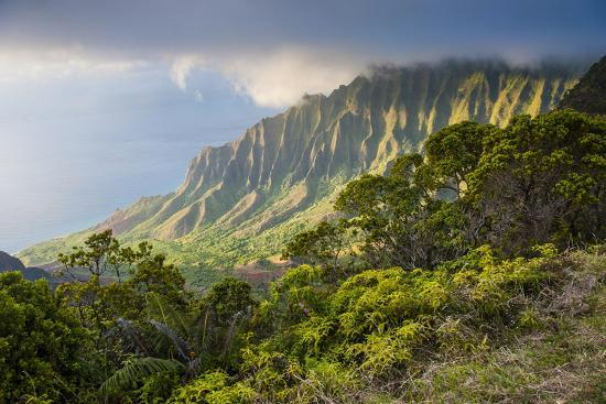 Kalalau Lookout over the Napali Coast from the Kokee State Park-Michael Runkel-Photographic Print