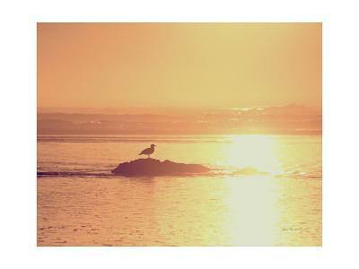 Kalaloch Sunset I Crop-Laura Marshall-Art Print