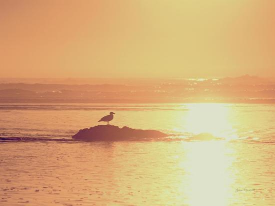 Kalaloch Sunset I Crop-Laura Marshall-Art Print