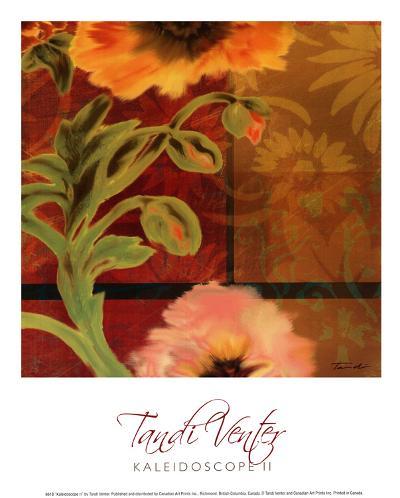 Kaleidoscope II-Tandi Venter-Art Print