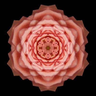 https://imgc.artprintimages.com/img/print/kaleidoscope-rose_u-l-q12vwwk0.jpg?p=0