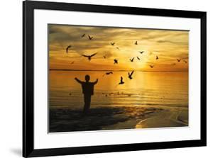 Flying Seagull with Silhouette by KAM