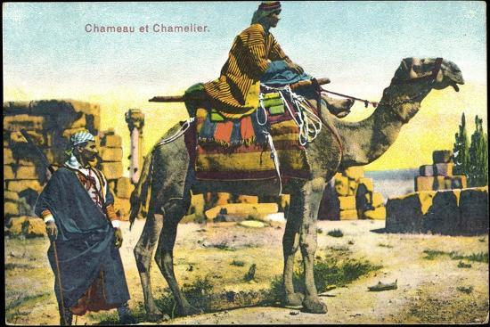 Kamel, Chameau Et Chamelier, Kamel Und Kameltreiber, Bunte Sitzdecken--Giclee Print