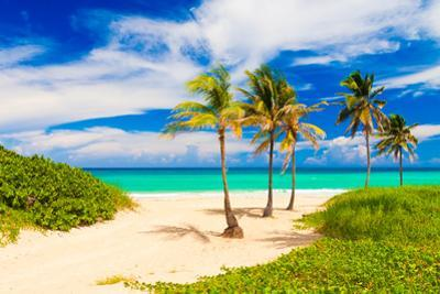 Beautiful Tropical Beach in Cuba by Kamira