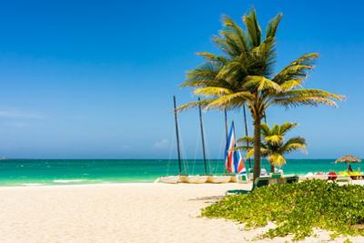 The Tropical Beach of Varadero in Cuba with Coconut Palms and Colorful Sailing Boats by Kamira