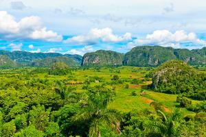 The Vinales Valley in Cuba, a Famous Tourist Destination and a Major Tobacco Growing Area by Kamira