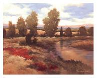 Red Roofs I-Kanayo Ede-Art Print