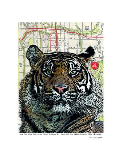 Kansas City Tiger--Art Print