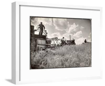 Kansas Farmer Driving Farmall Tractor as He Pulls a Manned Combine During Wheat Harvest-Margaret Bourke-White-Framed Premium Photographic Print