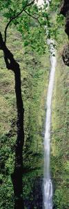 Kapoloa Falls, Kohala, Hawaii, USA