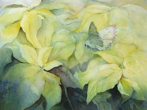 Cream Poinsettia with butterfly by Karen Armitage