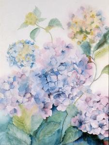 Hydrangea, Blue Wave I by Karen Armitage