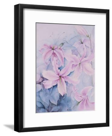 Lilies, Pink Auratum