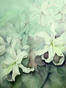 Lilies, White Auratum by Karen Armitage