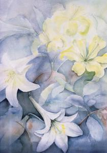 Lilium, Hearts Desire and Imperiale by Karen Armitage