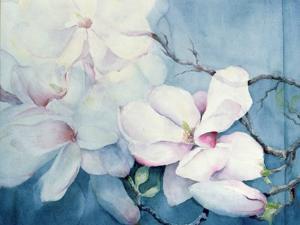 Magnolia Soulangeana (Horizontal) by Karen Armitage