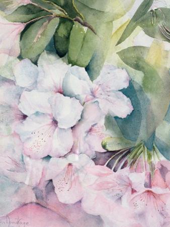 Morning Magic by Karen Armitage
