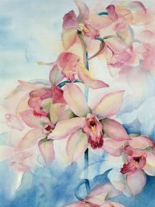 Orchid Cymbidium Ramley by Karen Armitage