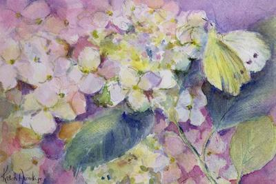 Pale Clouded Yellow Butterfly, Colias Hyale on Hydrangea