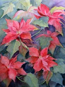 Poinsettia by Karen Armitage