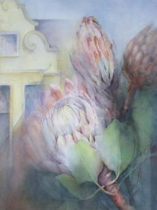 Protea at Stellenbosch, 1992 by Karen Armitage