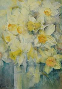 Spring Time, mixed daffodils in tank No 3., Mrs Krelage, Ice Follies and Fortune by Karen Armitage
