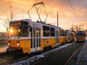 Budapest tram at sunrise, Budapest, Hungary by Karen Deakin