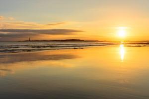 Sunrise at Seacliff Beach, East Lothian, Scotland, United Kingdom, Europe by Karen Deakin