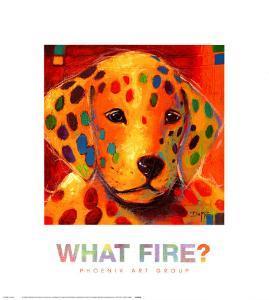 What Fire by Karen Dupré