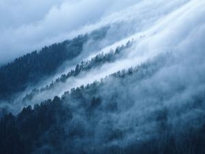 Fog in the Smokey Mountains by Karen Kasmauski