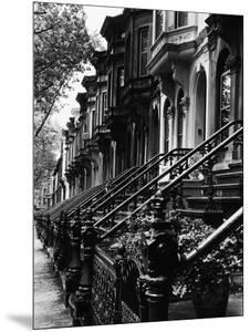 Stoops on 19th Century Brooklyn Row Houses by Karen Tweedy-Holmes
