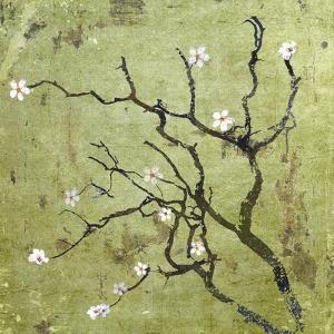 Cherry Tree I by Karen Williams