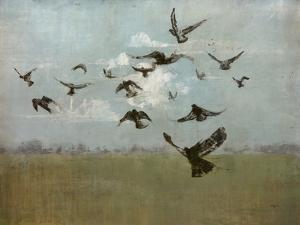 Majestic Flight by Kari Taylor