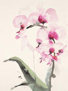Morning Orchid 1 by Karin Johannesson
