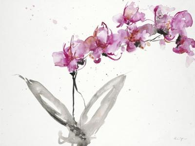 Orchids 2 by Karin Johannesson