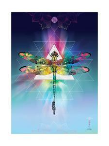 Cosmic Dragonfly by Karin Roberts