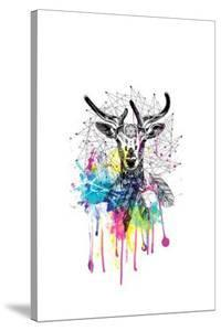 Deer by Karin Roberts