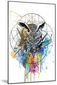 Owl by Karin Roberts