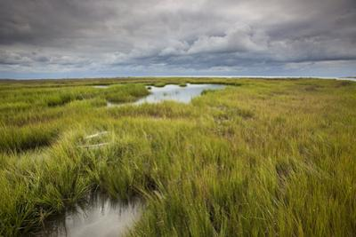 Stormy Skies Hang Over The Marshlands Surrounding Smith Island In The Chesapeake Bay by Karine Aigner