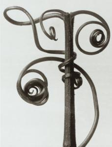 Curcubita, Pumpkin Tendril by Karl Blossfeldt