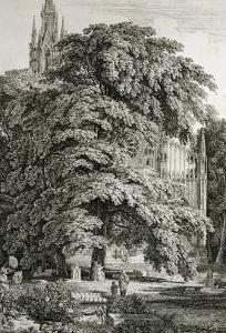Cathedral Hidden Among Trees by Karl Friedrich Schinkel