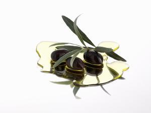 Black Olives and Olive Sprig in Olive Oil by Karl Newedel